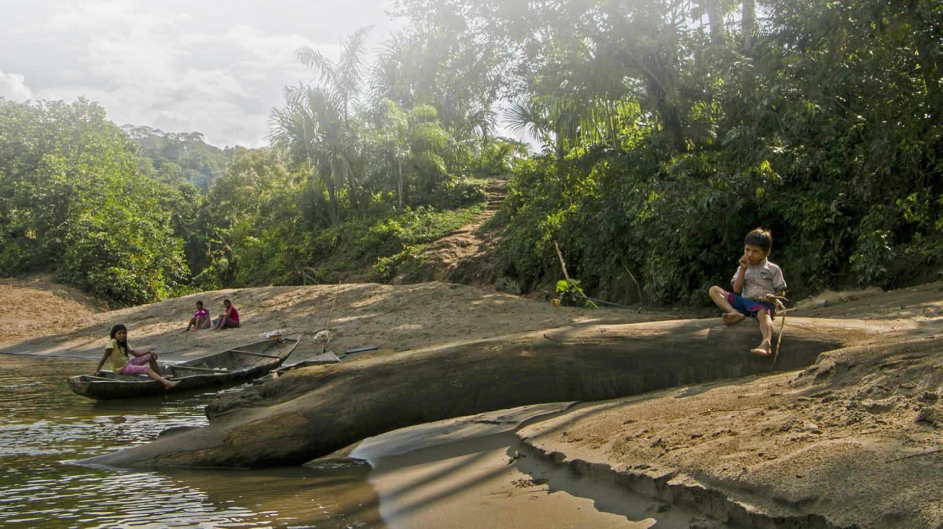 vigilante amazonico
