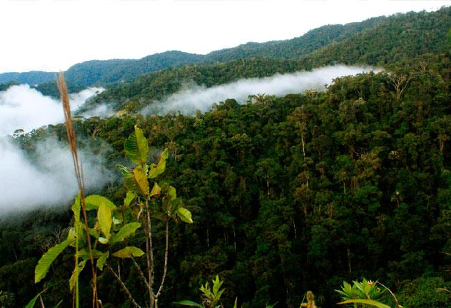 Cordillera del Cóndor es reconocida como territorio ancestral