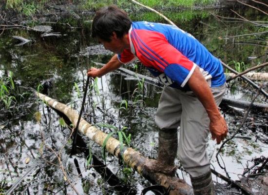 plomo en indígenas de la Amazonía