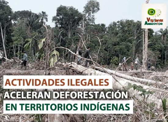 Actividades-ilegales-aceleran-deforestacion-en-territorios-indigenas